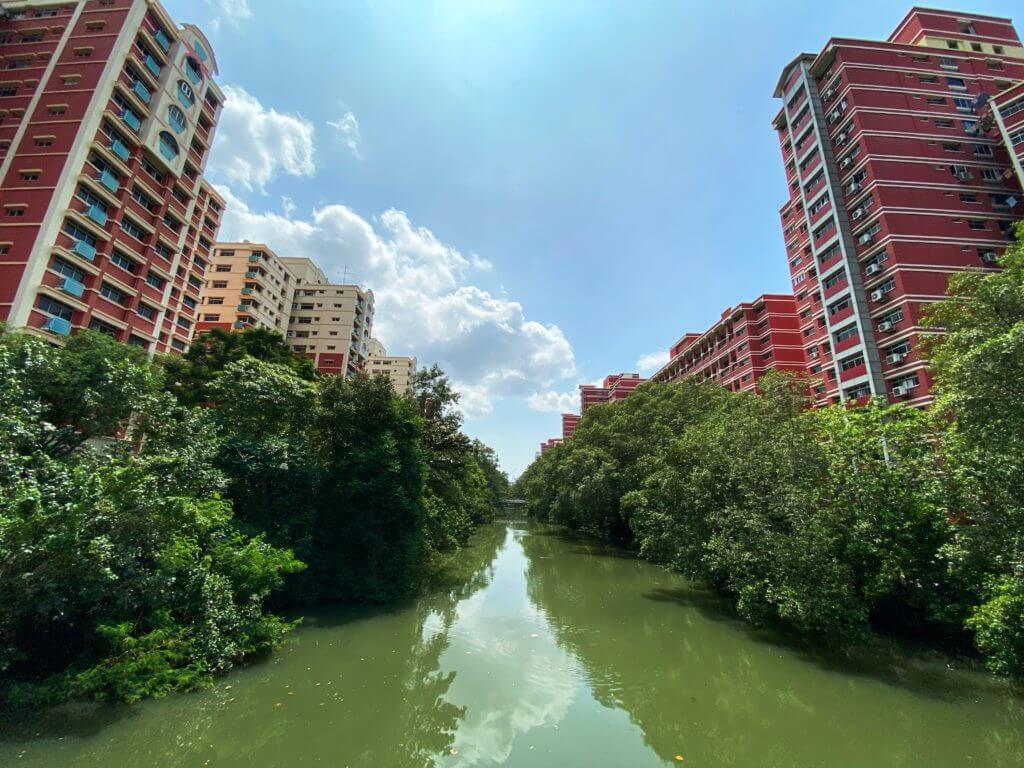 HDB blocks along apiapi river